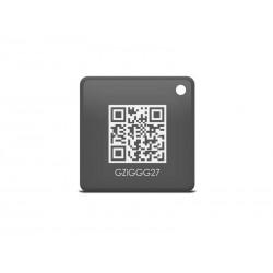 Čip RFID IGET SECURITY M3P22